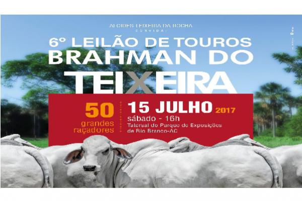 6º LEILÃO DE TOUROS BRAHMAN DO TEIXEIRA