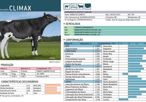 CLIMAX 2019 - IMPRESSÃO.png