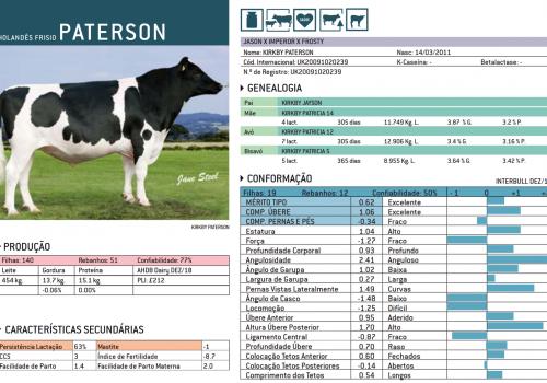 PATERSON 2019 - IMPRESSÃO.png
