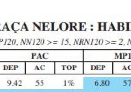 Barac SN ANCP 2020 TOP Leite.JPG