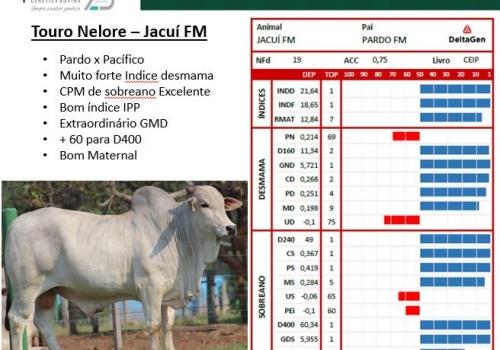 Jacuí FM Prova