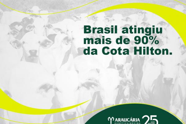 Brasil atinge mais de 90% da Cota Hilton