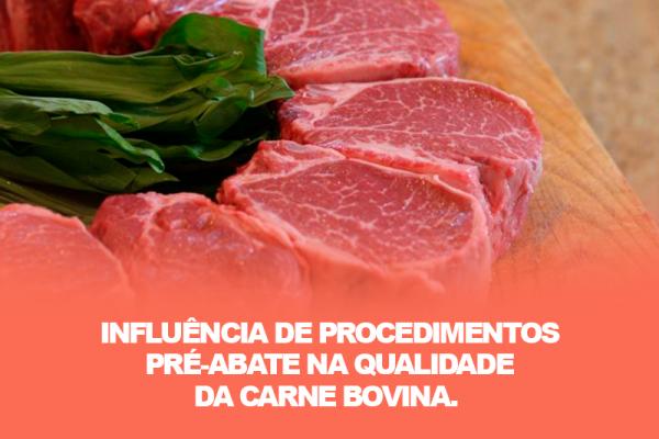 Influência de procedimentos pré-abate na qualidade da carne bovina