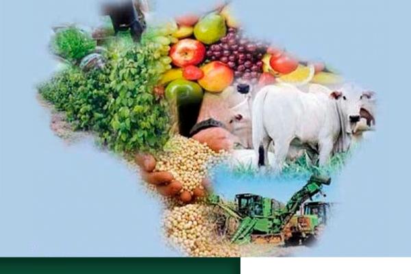 Nos próximos dez anos, ritmo de crescimento do agronegócio brasileiro será maior do que no resto do mundo