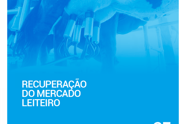 Mercado de leite no Brasil pode se recuperar em 2017