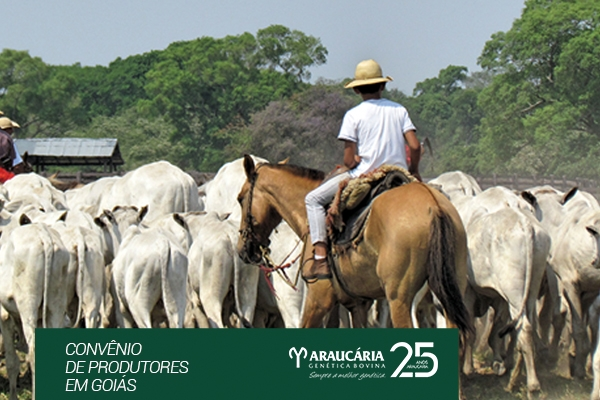 Convênio de produtores em Goiás