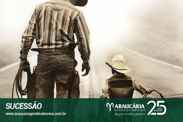 Preparando a governança e a sucessão nas empresas rurais familiares