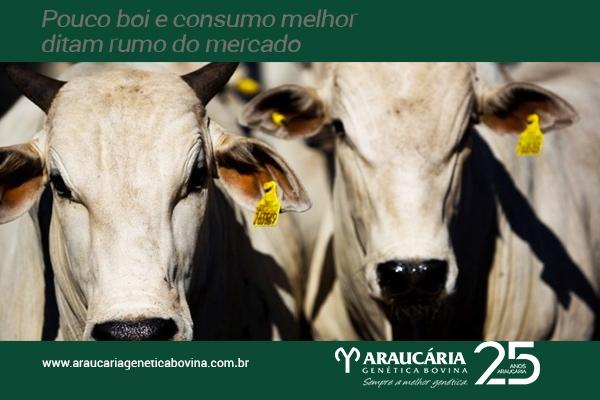 Pouco boi e consumo melhor ditam rumo do mercado