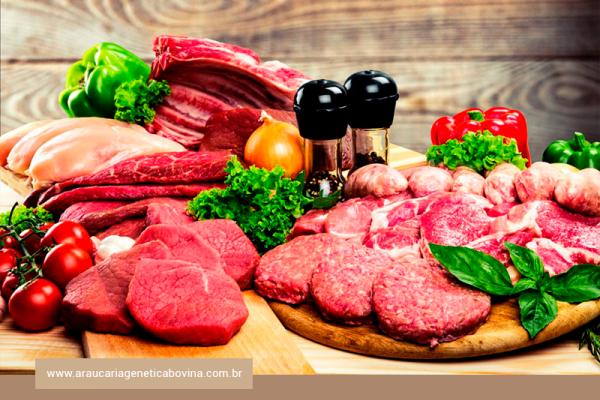 Revisões científicas examinam o papel da carne em uma dieta saudável