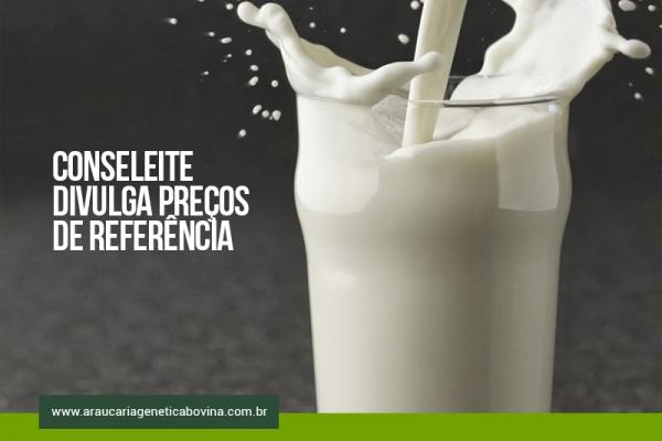 SC: Conseleite divulga preços de referência e valor do leite padrão aumenta 7%