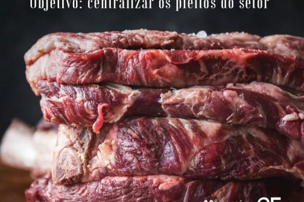 Tereza Cristina anuncia que criará câmara setorial de carnes