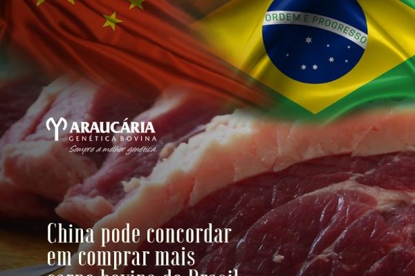 China pode concordar em comprar mais carne bovina do Brasil, diz embaixador