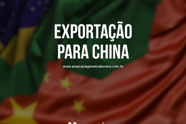 Brasil tem expectativa de habilitar 78 frigoríficos para a China