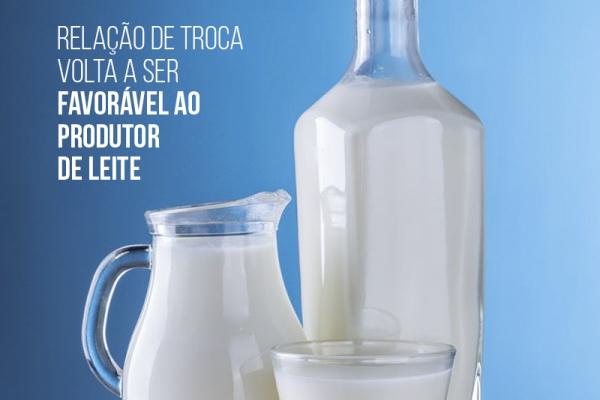 Relação de troca volta a ser favorável ao produtor de leite