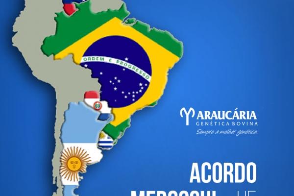Acordo Mercosul-UE prevê eliminação de tarifas para diversos produtos agrícolas do Brasil