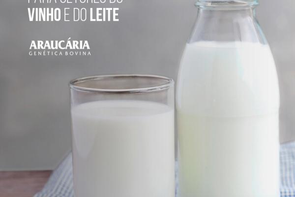 Após acordo, governo prepara medidas compensatórias para setores do vinho e do leite