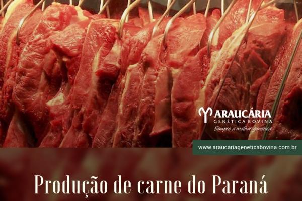 Produção de carne do Paraná deve crescer 27% em 10 anos