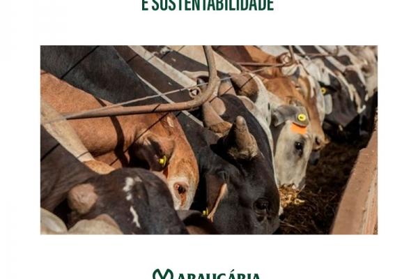 Confinamento: produtividade e sustentabilidade
