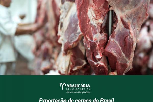 Exportação de carnes do Brasil deve ter recorde em 2021 com impulso chinês, diz Rabobank