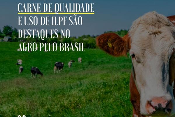 Produção de carne de qualidade e uso de ILPF são destaques no Agro pelo Brasil