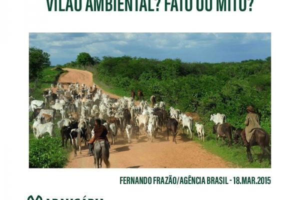 Xico Graziano: Seria o boi um vilão ambiental? Fato ou mito?