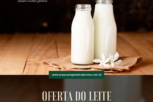 Oferta de leite aumenta em 2021, diz AHDB