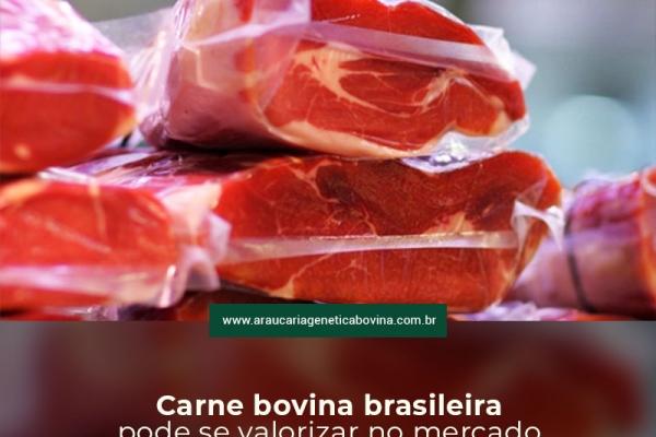 Carne bovina brasileira pode se valorizar no mercado externo após parecer da OIE