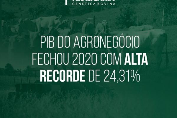 PIB do agronegócio fechou 2020 com alta recorde de 24,31%
